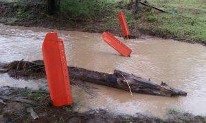 waratah-Flood-post