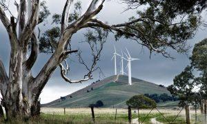 windturbines-ahead