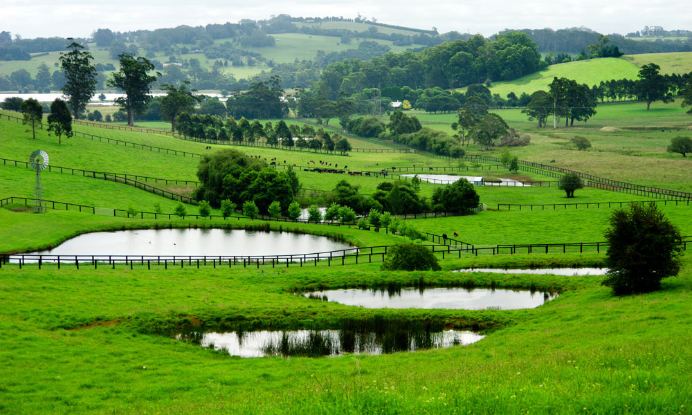 nsw-small-farm