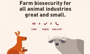 FarmBiosecurity-animalind