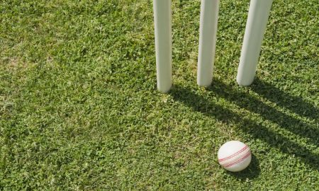 white ball cricket