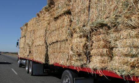 hay truck stock