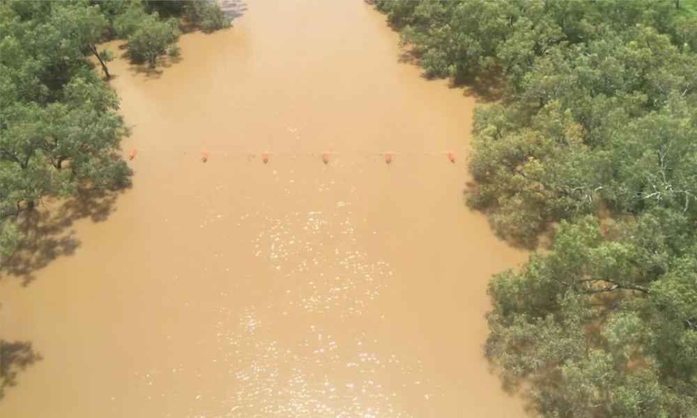 waratah flood posts the fence