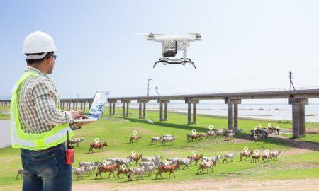 livestock technology stock image