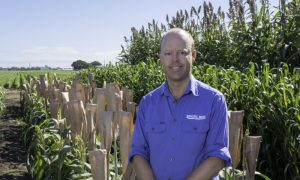 Pacific Seeds forage development lead Wayne Chesher.