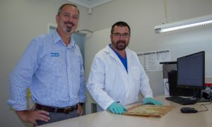 Pacific Seeds wheat manager Neil Comben and seed analyst Tim Kirby.