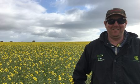 Yorketown grower Richard Dodd is using brand new canola technology on his farm.