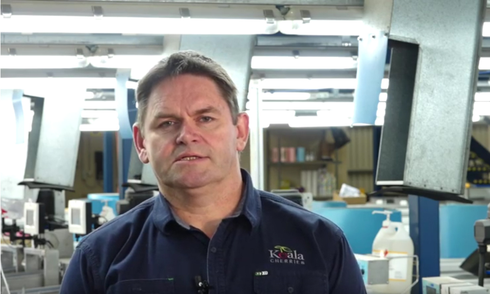 Mick Rouget is part owner of Koala Cherries, located in Yarck in central Victoria