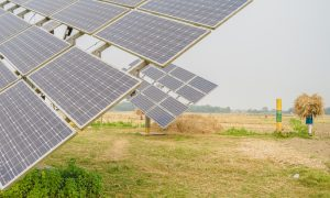 agriculture solar energy stock image