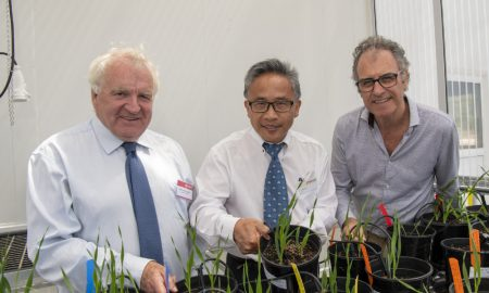 Peter, Chengdao, Mark at Grain Research Precinct