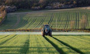 enhanced efficiency fertilisers