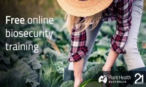 plant biosecurity surveillance training