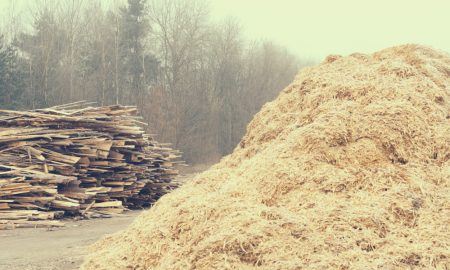 sawmill residue stock image