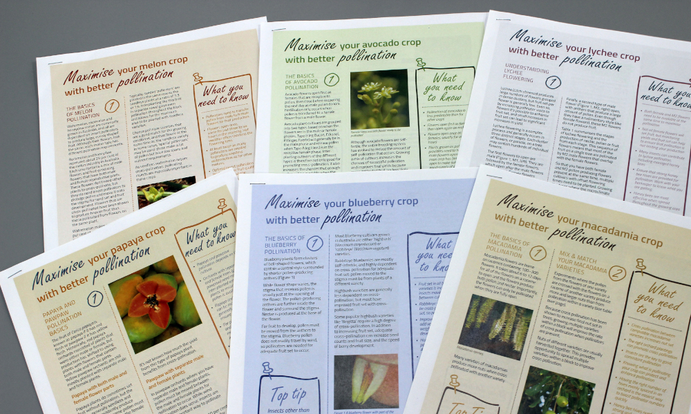 Strengthening and Enabling Effective Pollination for Australia