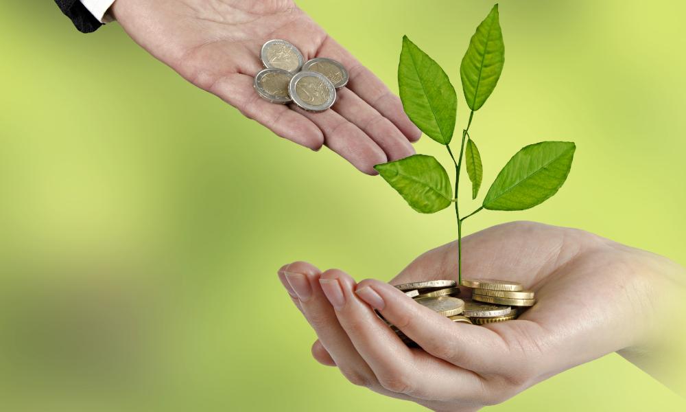 Smart Farms Small Grants
